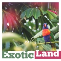 Todays Hits Exotic Land ‐ Chillout Music, Holiday Time, Sea Sounds, Deep Relax, Beach Party, Crazy Fun