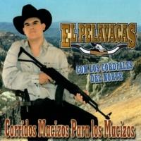 El Pelavacas/Los Cordiales del Norte Corridos Macizos para los Macizos