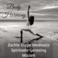 Rebirth New Age & Meditation Meditate Oasis & Spiritual Fitness Body Harmony - Zachte Diepe Meditatie Spirituele Genezing Muziek voor Spa Behandelingen Mindfulness Oefeningen en Neurofeedback Ervaringen