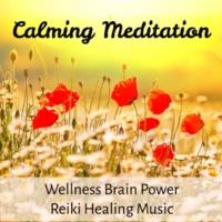 Wellness Shades & Brain Study Music Specialists & Binaural Beats Recordings Calming Meditation - Wellness Brain Power Reiki Healing Music for Relax Life with Instrumenal Nature Sounds