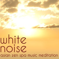 Zen Music Garden Natural White Noise Asian Zen Spa Music Meditation Relaxation with Nature Sounds and Rain to Help You Sleep Well and Soundly