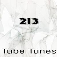Eze Gonzalez,from Siberia,Death Plays,Stereo Sport,Cristian Agrillo,Raimon,Dj Tommy One,LifeStream,Lank,Nic Bax,Sean McClellan&Vinayak A Tube Tunes, Vol.213