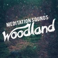 Nature Sounds Meditation,Sound Library XL&Sounds of Nature Meditation Sounds: Woodland