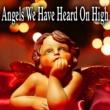 Acme Phone Company Angels We Have Heard on High