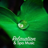 Spa, Relaxation and Dreams Relaxation & Spa Music