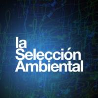 Musica Ambiental La Selección Ambiental
