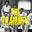 The Trammps Betcha by Golly Wow