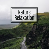 Sounds of Nature Relaxation Nature Relaxation ‐ Soft New Age Music, Relaxation Music, Calmness, Deep Rest, Relax After Work