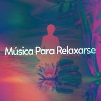 Música Zen Relaxante Música Para Relaxarse