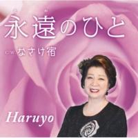 Haruyo なさけ宿