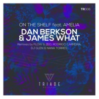 Flow & Zeo,Dj Glen,Rodrigo Carreira,Dan Berkson & James What&Nana Torres On The Shelf Feat. Amelia