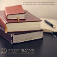 Concentration Music Ensemble 20 Study Tracks - Concentration Music for Studying for Beautiful Mind & Good Study Music to Focus and Improve Memory