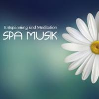 Meister der Entspannung und Meditation Entspannung und Meditation Spa Musik
