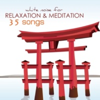 Sounds of Nature White Noise for Mindfulness Meditation and Relaxation White Noise for Meditation & Relaxation - 101 Songs Relaxing Mindfulness Meditations Sounds of Nature, Background Music
