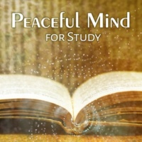 Study Focus Peaceful Mind for Study ‐ Deep Focus, Calming Music for Learning, Pure Mind, Nature Sounds, Calm Waves, Free Birds, Better Memory