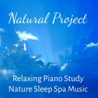 Relaxing Piano Music & Reading and Studying Music & Spa Relaxation & Spa Natural Project - Relaxing Piano Study Nature Sleep Spa Music for Stress Relief Deep Meditation with Healing Calming Soft Sounds