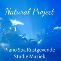 Relaxation Meditation Yoga Music & Meditation Music Masters & Water Sounds Music Universe Natural Project - Piano Spa Rustgevende Studie Muziek voor Diepe Slaap Zen Meditatie Yoga Chakra met Natuur Zachte Instrumentale Geluiden