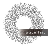manabu yanagisawa wave trip