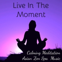 Asian Zen Spa Music Meditation & Meditation Relaxation Club & Binaural Beats Live In The Moment - Calming Asian Zen Spa Meditation Music for Brilliant Mind Sleep Time and Slow Life