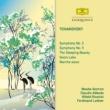 ロンドン交響楽団/クラウディオ・アバド 交響曲 第5番 ホ短調 作品64: 第1楽章:Andante - Allegro con anima