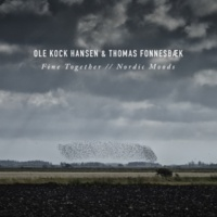 Ole Kock Hansen/Thomas Fonnesbaek I Strolled Out a Summer's Day