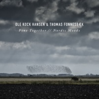Ole Kock Hansen/Thomas Fonnesbaek Uncharted Land