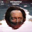 Thundercat Show You The Way (feat. Micheal McDonald & Kenny Loggins)