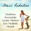 Soft Instrumental Songs & Relaxing Piano Masters & Buddha Zen Spa Stress Reduction - Eindeloos Bewustzijn Lucide Dromen Zen Meditatie Muziek voor Klanktherapie Reiki Heling Sereniteit