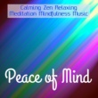 Calm Music for Studying & Reiki & Relaxation and Meditation Peace of Mind - Calming Zen Relaxing Meditation Mindfulness Music for Spiritual Light Healing Massage Free Life