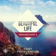 Lost Frequencies feat. Sandro Cavazza Beautiful Life(Cryptic Remix)