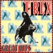 T.Rex 20TH CENTURY BOY