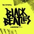 レイ・シュリマー Black Beatles [Madsonik Remix]