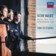 Trio di Parma Schubert: Piano Trio No.2 in E flat, Op.100 D.929 - 2. Andante con moto