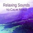 Calm Music Zone