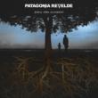 Patagonia Revelde Va  A Pasar