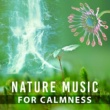 Relaxing Music Guys Sounds of Nature