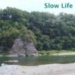 GUMI/CYBER DIVA Slow Life