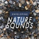 Zen Natural Meditation Enveloping Nature Sounds