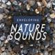 Zen Natural Meditation Enveloping Nature Sounds