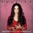 Shakira Donde Estan Los Ladrones