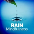 Rain Sounds for Meditation Brook Rain