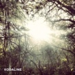 Kodaline All I Want