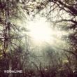 Kodaline The Kodaline EP