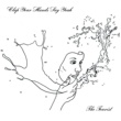 Clap Your Hands Say Yeah The Pilot