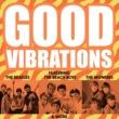 The Box Tops Good Vibrations - Smash Hits Galore