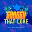 Shaggy That Love
