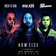 Steve Aoki/Rich The Kid/ILoveMakonnen How Else (David Guetta Remix) (feat.Rich The Kid/ILoveMakonnen)