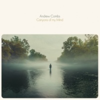 Andrew Combs Heart of Wonder