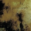 Sarah McLachlan Fallen (Album Mix)