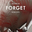 Boxed In Forget (Extended Mix)